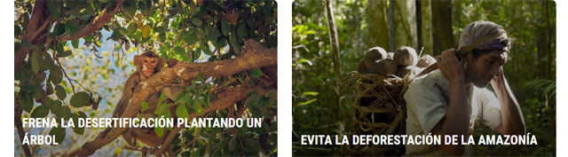 proyectos de Save The Planet Now